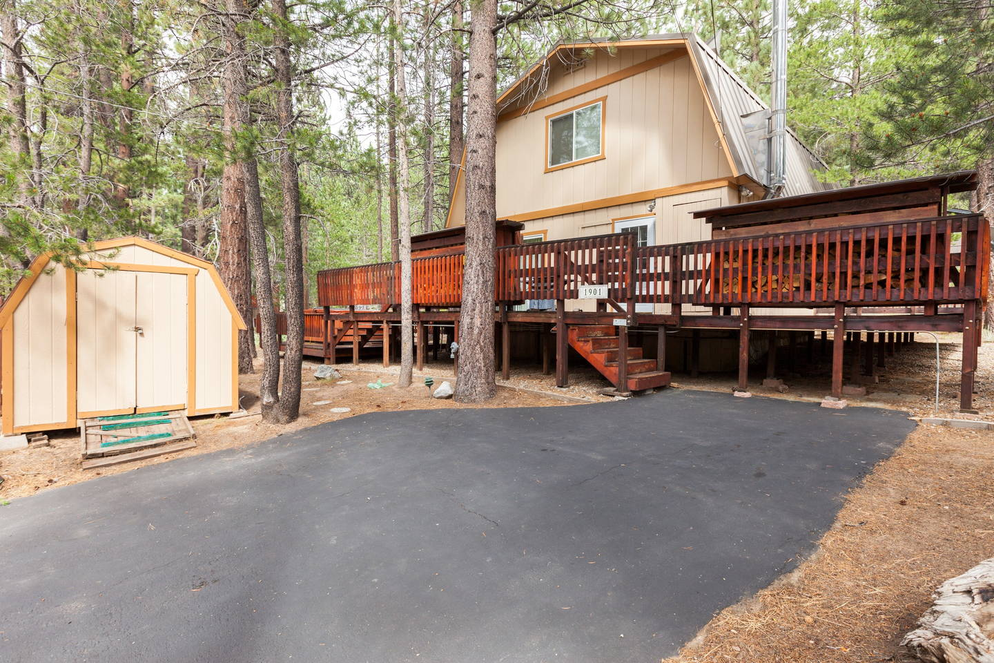 tahoe luxury for shore sale friendly lake nevada rentals cabins in south dog rental